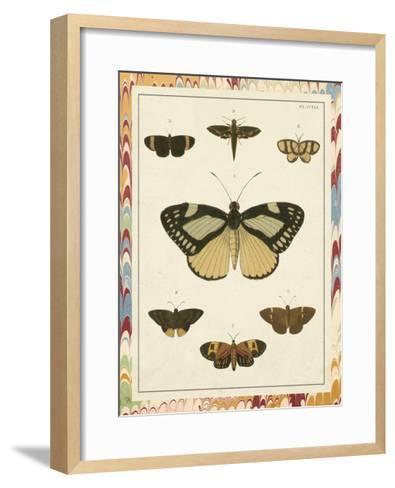 Marble Butterflies II-Vision Studio-Framed Art Print