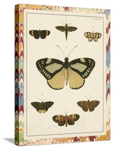 Marble Butterflies II-Vision Studio-Stretched Canvas Print