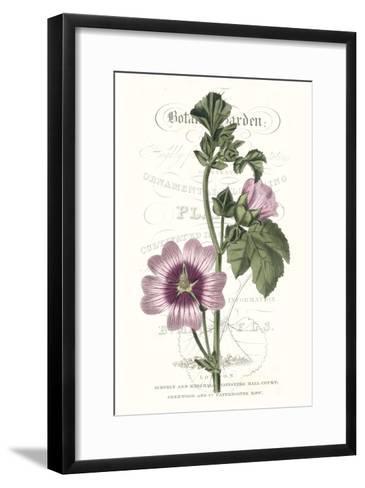 Flower Garden Varietals IV-Vision Studio-Framed Art Print