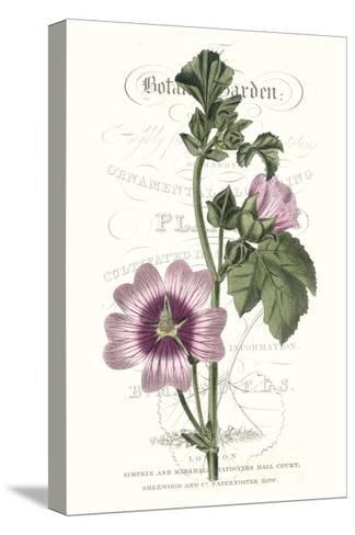 Flower Garden Varietals IV-Vision Studio-Stretched Canvas Print