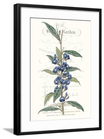 Flower Garden Varietals VI-Vision Studio-Framed Art Print