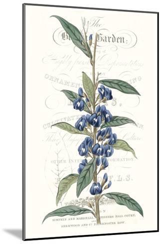 Flower Garden Varietals VI-Vision Studio-Mounted Premium Giclee Print
