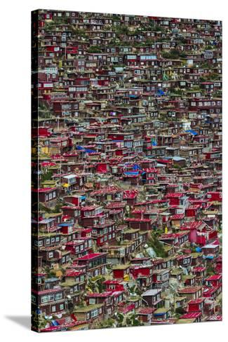 Red log cabins, Seda Larung Wuming, Garze, Sichuan Province, China-Keren Su-Stretched Canvas Print