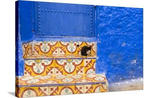 North Africa, Morocco, Traiditoional Moroccan architecture of Chefchaouen.-Emily Wilson-Stretched Canvas Print