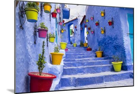 North Africa, Morocco, Traiditoional blue streets of Chefchaouen.-Emily Wilson-Mounted Photographic Print