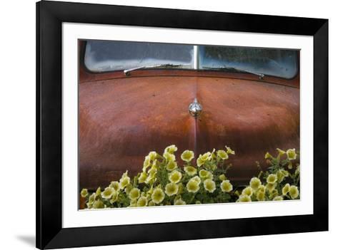 USA, Alaska, Chena Hot Springs. Old truck and flowers.-Jaynes Gallery-Framed Art Print