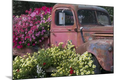 USA, Alaska, Chena Hot Springs. Old truck and flowers.-Jaynes Gallery-Mounted Photographic Print