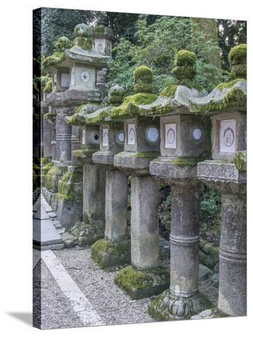 Japan, Nara, Kasuga Shrine Lanterns-Rob Tilley-Stretched Canvas Print