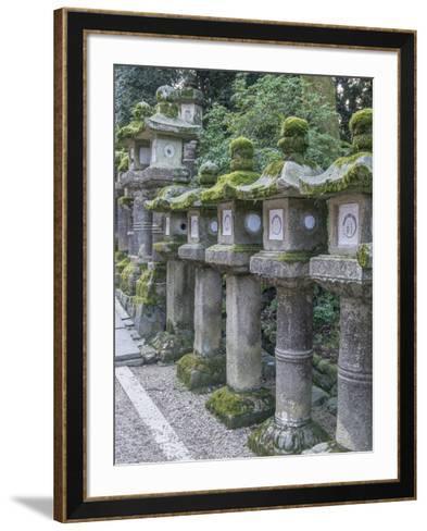 Japan, Nara, Kasuga Shrine Lanterns-Rob Tilley-Framed Art Print