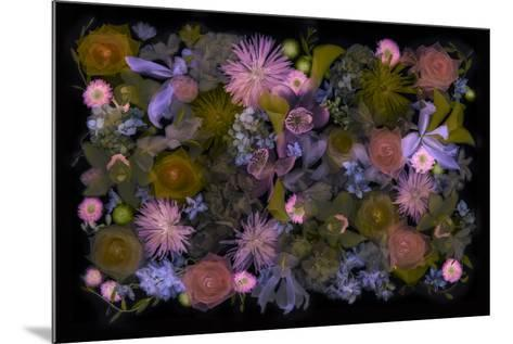 USA, Florida. Floral bounty-Hollice Looney-Mounted Photographic Print