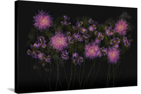 USA, Florida. Floral bounty-Hollice Looney-Stretched Canvas Print