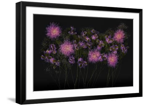USA, Florida. Floral bounty-Hollice Looney-Framed Art Print