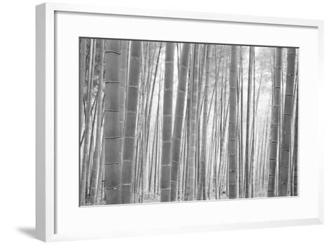 Bamboo Forest, Sagano, Kyoto, Japan--Framed Art Print