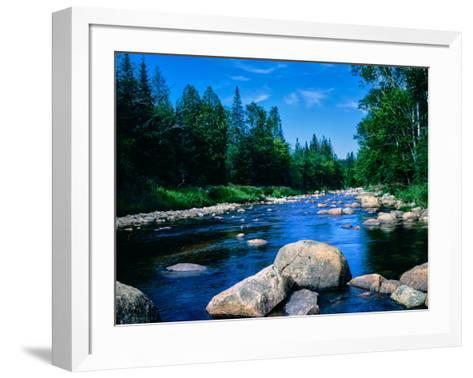 River flowing through a forest, Ausable River, Lake Placid, Adirondack Mountains, Essex County,...--Framed Art Print