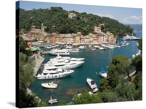 Elevated view of the Portofino, Liguria, Italy--Stretched Canvas Print