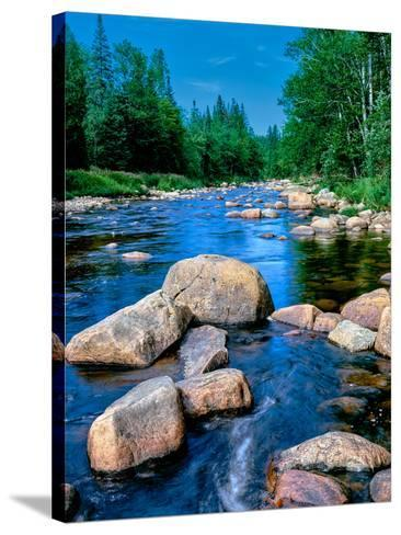 River flowing through a forest, Ausable River, Lake Placid, Adirondack Mountains, Essex County,...--Stretched Canvas Print