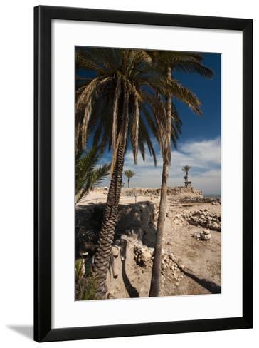 Ruins of ancient city, Megiddo National Park, Megiddo, North Coast, Israel--Framed Art Print