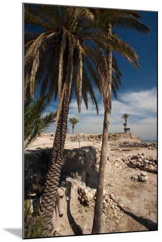 Ruins of ancient city, Megiddo National Park, Megiddo, North Coast, Israel--Mounted Photographic Print
