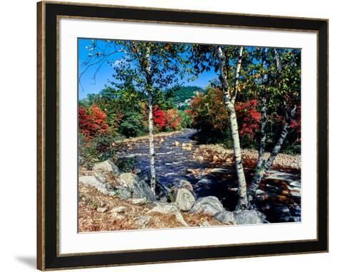 River flowing through a forest, Swift River, Kancamagus Highway, White Mountain National Forest...--Framed Art Print