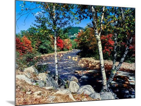 River flowing through a forest, Swift River, Kancamagus Highway, White Mountain National Forest...--Mounted Photographic Print