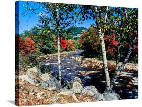 River flowing through a forest, Swift River, Kancamagus Highway, White Mountain National Forest...--Stretched Canvas Print