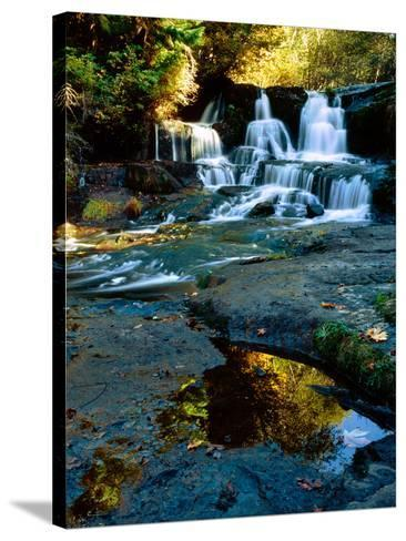Scenic view of waterfall, Alsea Falls, South Fork Alsea River, Benton County, Central Coast Rang...--Stretched Canvas Print