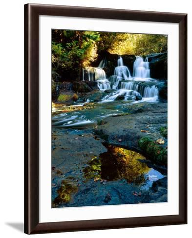 Scenic view of waterfall, Alsea Falls, South Fork Alsea River, Benton County, Central Coast Rang...--Framed Art Print