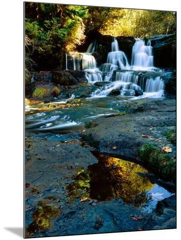 Scenic view of waterfall, Alsea Falls, South Fork Alsea River, Benton County, Central Coast Rang...--Mounted Photographic Print