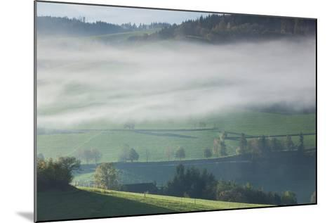 Morning fog in valley during autumn, Horben, Black Forest, Baden-Wurttemberg, Germany--Mounted Photographic Print