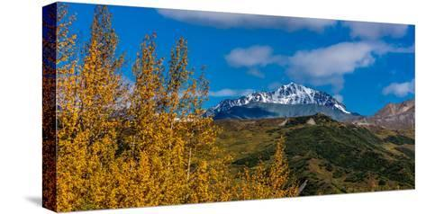 Lookout view of Glacier and Mountains off Richardson Highway, Route 4, Alaska--Stretched Canvas Print