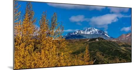 Lookout view of Glacier and Mountains off Richardson Highway, Route 4, Alaska--Mounted Photographic Print