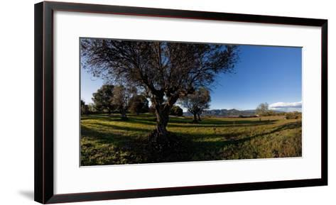 View of a field, Santa Eulalia De Roncana, Barcelona, Catalonia, Spain--Framed Art Print