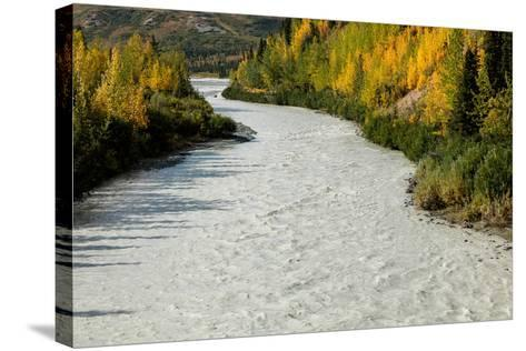 Roaring river and autumn color as seen off Richardson Highway, Route 4, North of Paxon, Alaska--Stretched Canvas Print