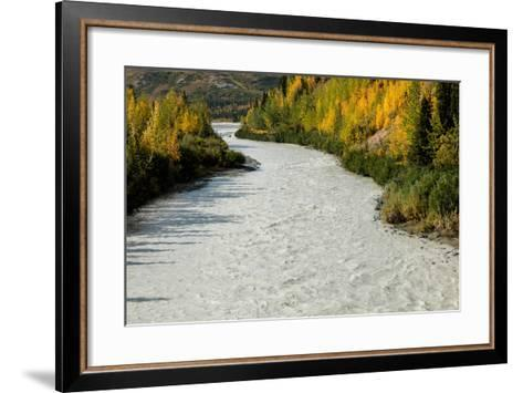 Roaring river and autumn color as seen off Richardson Highway, Route 4, North of Paxon, Alaska--Framed Art Print