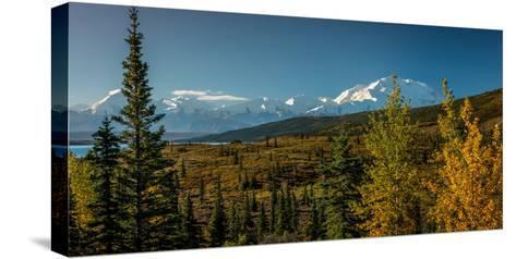 Mount Denali, previously known as McKinley from Wonder Lake, Denali National Park, Alaska--Stretched Canvas Print