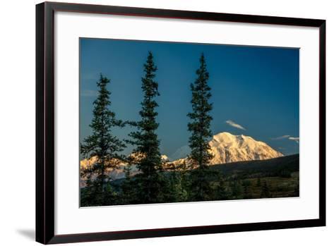 Mount Denali, previously known as McKinley from Wonder Lake, Denali National Park, Alaska--Framed Art Print