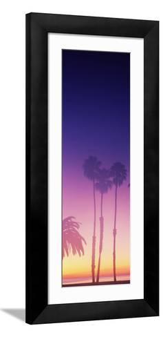 Silhouette of palm trees on beach during fog at sunset, Santa Barbara, California, USA--Framed Art Print