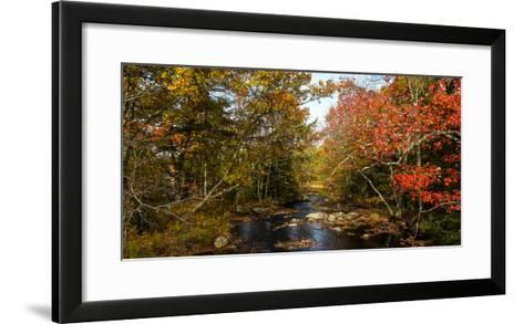 View of stream in fall colors, Maine, USA--Framed Art Print