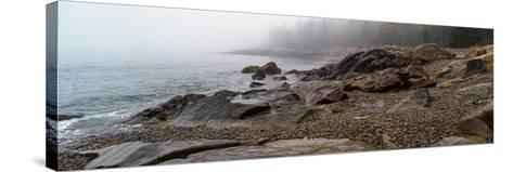 View of rocks at coast, Acadia National Park, Maine, USA--Stretched Canvas Print