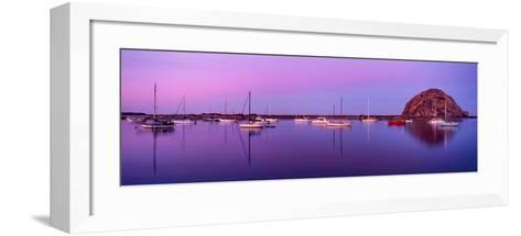 Boats moored at a harbor, Morro Bay Harbour, Morro Bay, California, USA--Framed Art Print