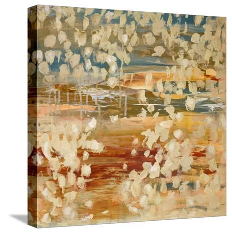 Pebbles 1-Brenna Harvey-Stretched Canvas Print