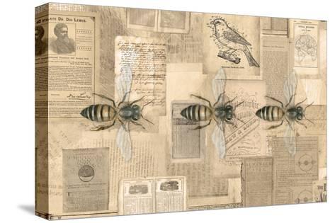 Academic Bee Illustration-Brenna Harvey-Stretched Canvas Print
