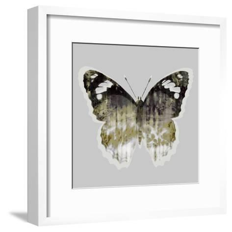 Painted Butterfly 1-THE Studio-Framed Art Print