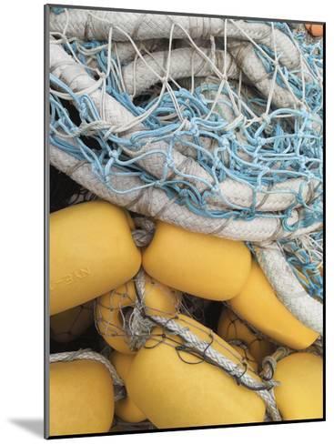 Fishing Net and Buoys-Mimi Payne-Mounted Premium Photographic Print