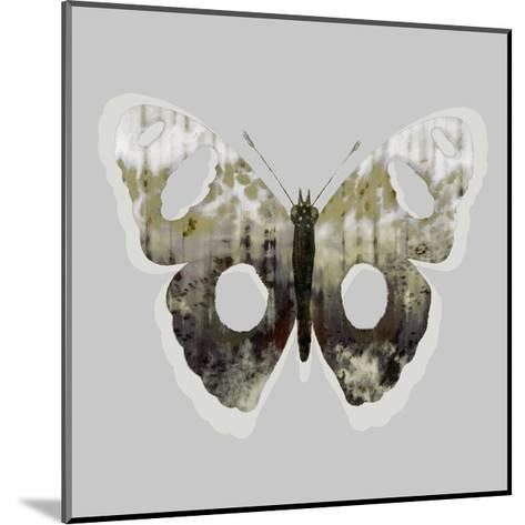 Painted Butterfly 2-THE Studio-Mounted Premium Giclee Print