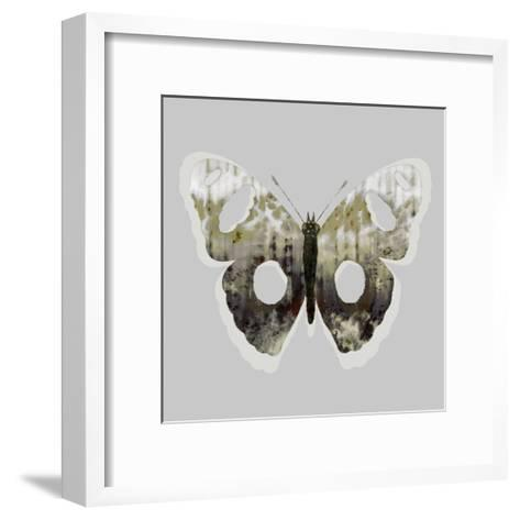 Painted Butterfly 2-THE Studio-Framed Art Print