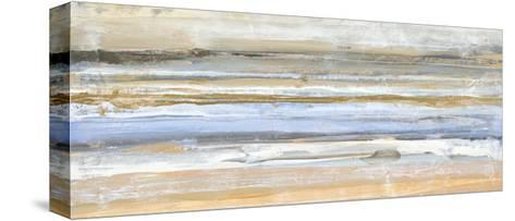 Banded 1-Kyle Goderwis-Stretched Canvas Print