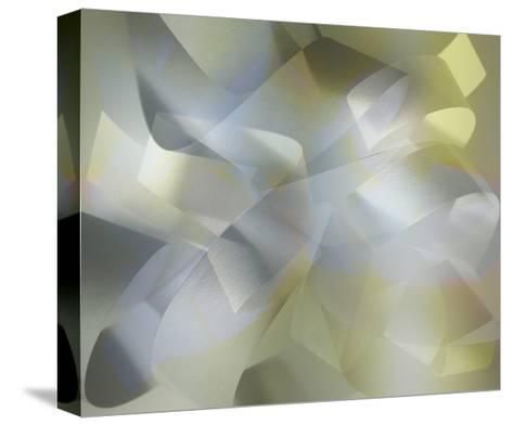 Paper Variation 4-David Jordan Williams-Stretched Canvas Print