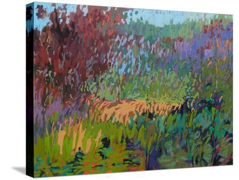 Color Field No. 72-Jane Schmidt-Stretched Canvas Print