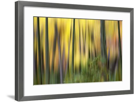 Forest Run II-James McLoughlin-Framed Art Print